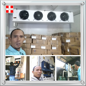 Service Cold Room